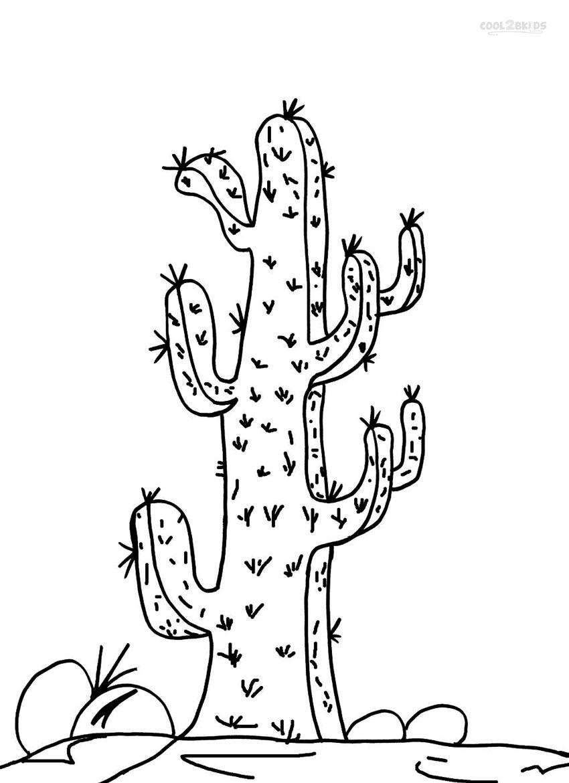ausmalbilder kaktus  malvorlagen kostenlos zum ausdrucken