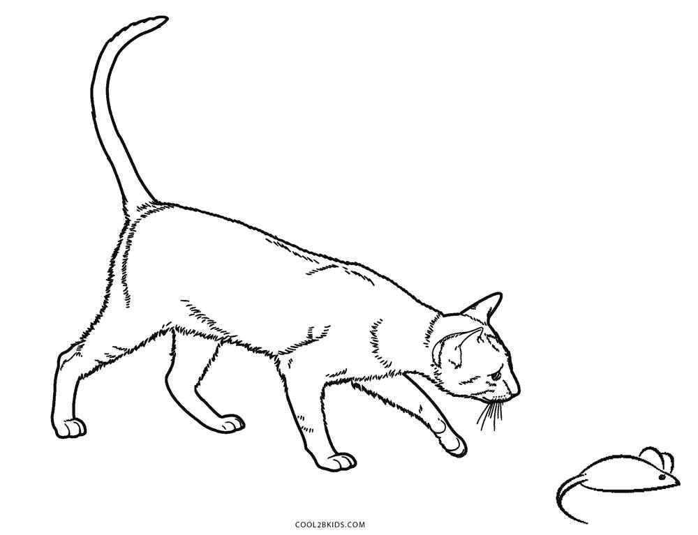 katze einhorn ausmalbilder  katzen malbuch katzen malbuch