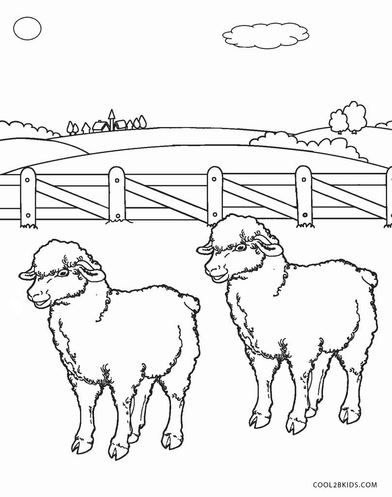 Ausmalbilder Schaf - Malvorlagen kostenlos zum ausdrucken