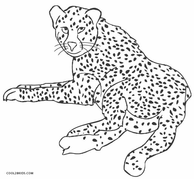 ausmalbilder geparden  malvorlagen kostenlos zum ausdrucken
