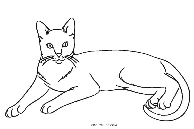 Ausmalbilder Katz Malvorlagen Kostenlos Zum Ausdrucken