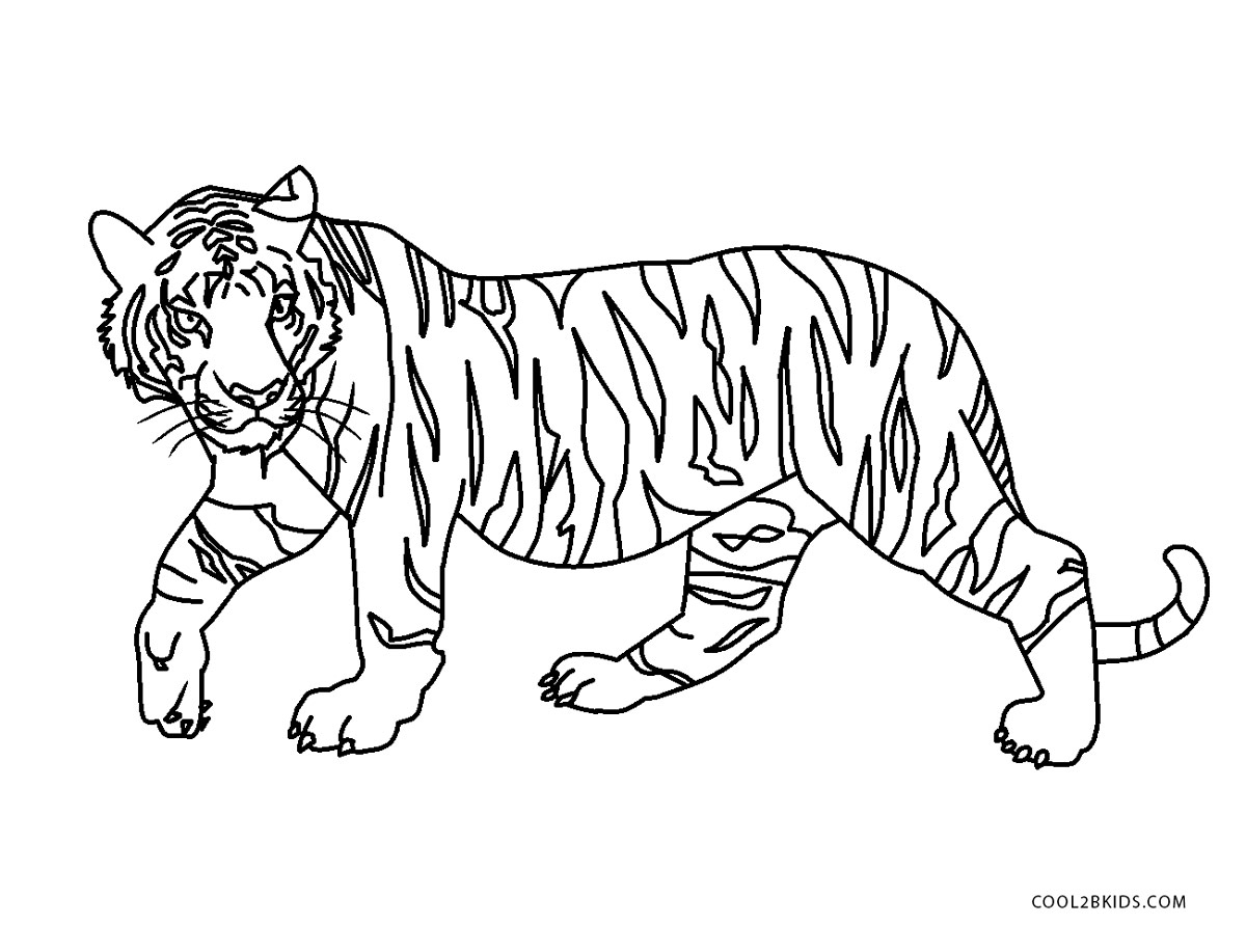 Ausmalbilder Tiger - Malvorlagen kostenlos zum ausdrucken